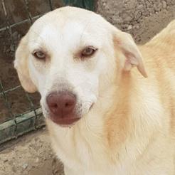 Profilbild von Marla