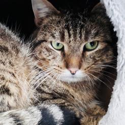 Profilbild von Kai-Uwe