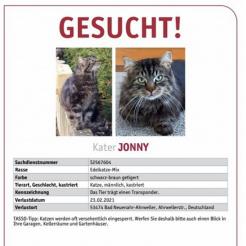 Katze Jonny