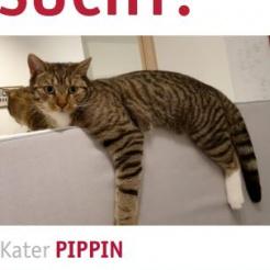 Profilbild von Pippin