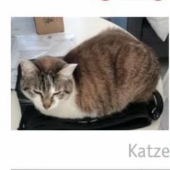 Profilbild von Karabumm