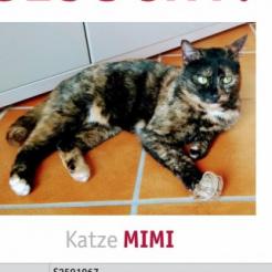 Profilbild von Mimi
