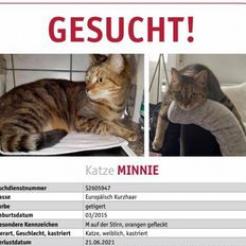 Profilbild von Minnie