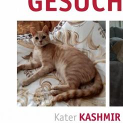 Profilbild von Kashmir
