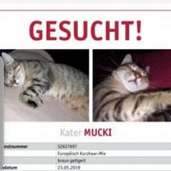 Profilbild von Mucki